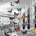 Effetto-Farfalla-a-Milano